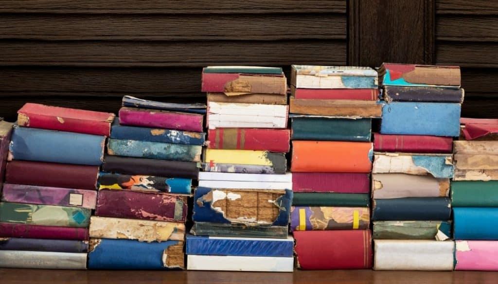 Termite Infested Books In Bookshelf
