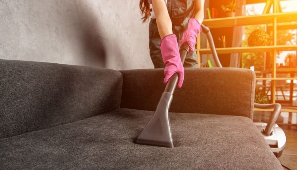Vacuum Cleaning Sofa To Get Rid of Fleas