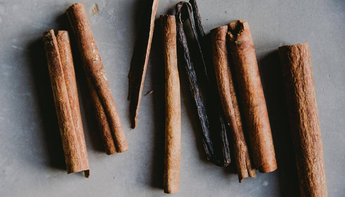 What Insects Does Cinnamon Repel_