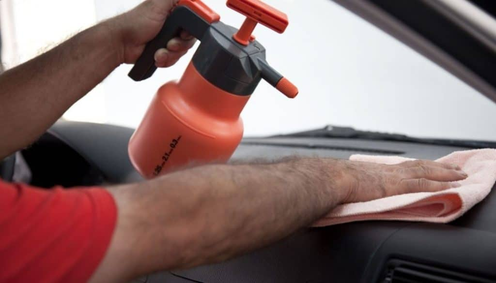 Spray IGR Insecticide Inside Your Car