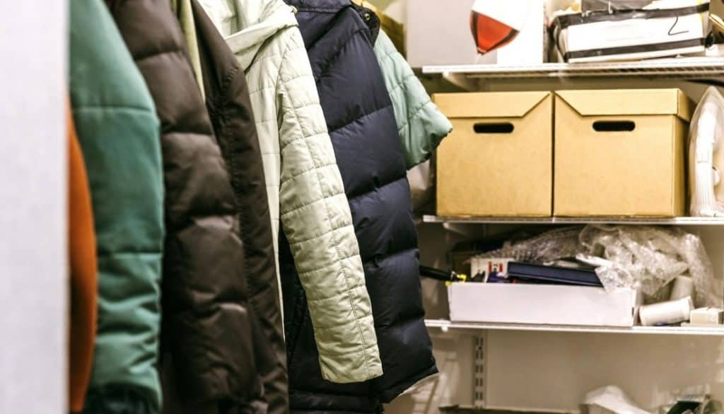 Clean Your Closet To Get Rid Of Fabric Pests