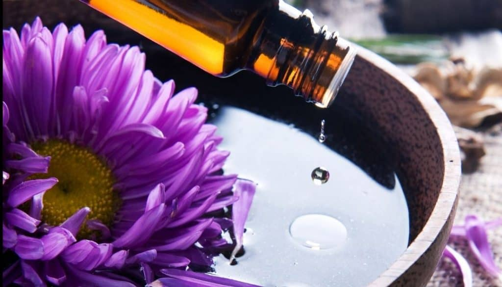 Essential Oils to Get Rid Of Earwigs
