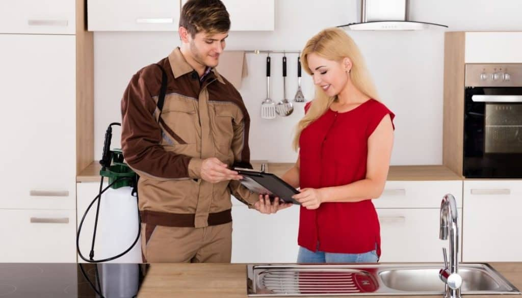 Successfully finished bed bug removal jobs
