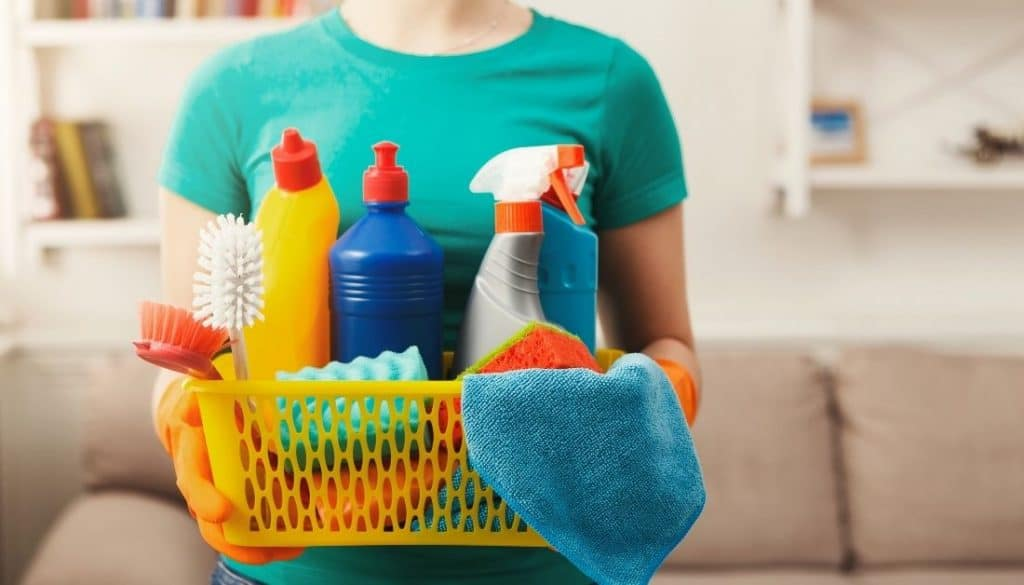Home Products That Kill Fleas