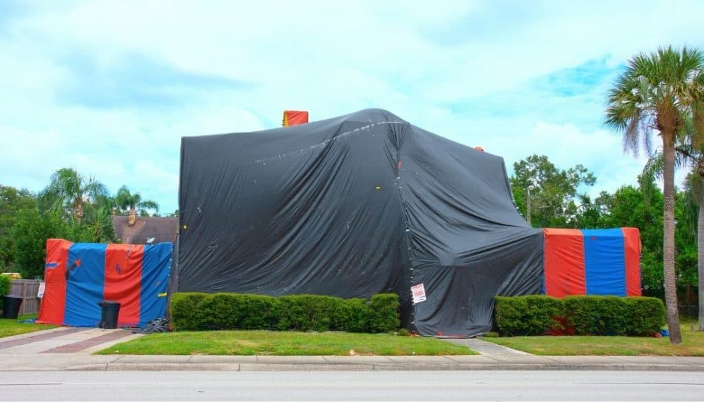 How long does termite tenting last