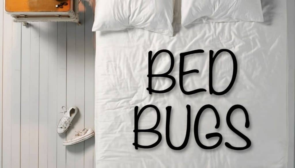 My apartment has bed bugs what are my rights