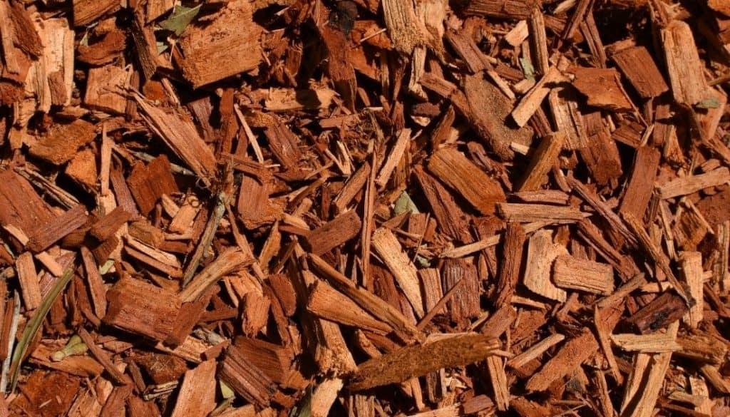 best mulch to avoid termites
