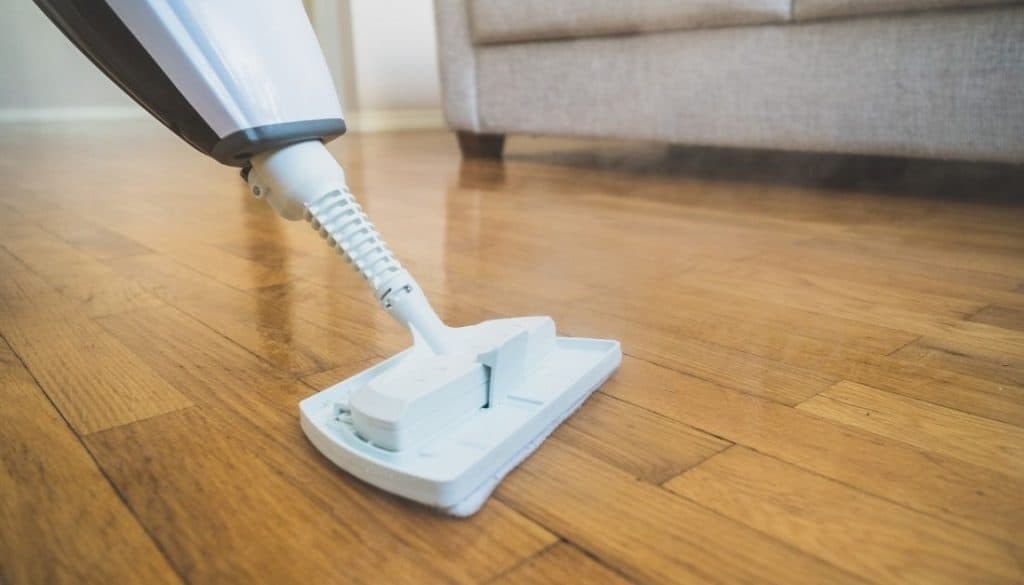 Best Way To Kill Bed Bugs On Wooden Floor Hard Surfaces