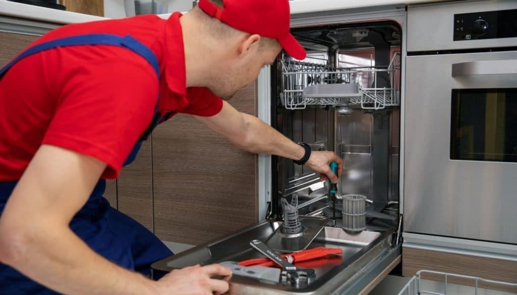 How to get rid of tiny bugs in dishwashers