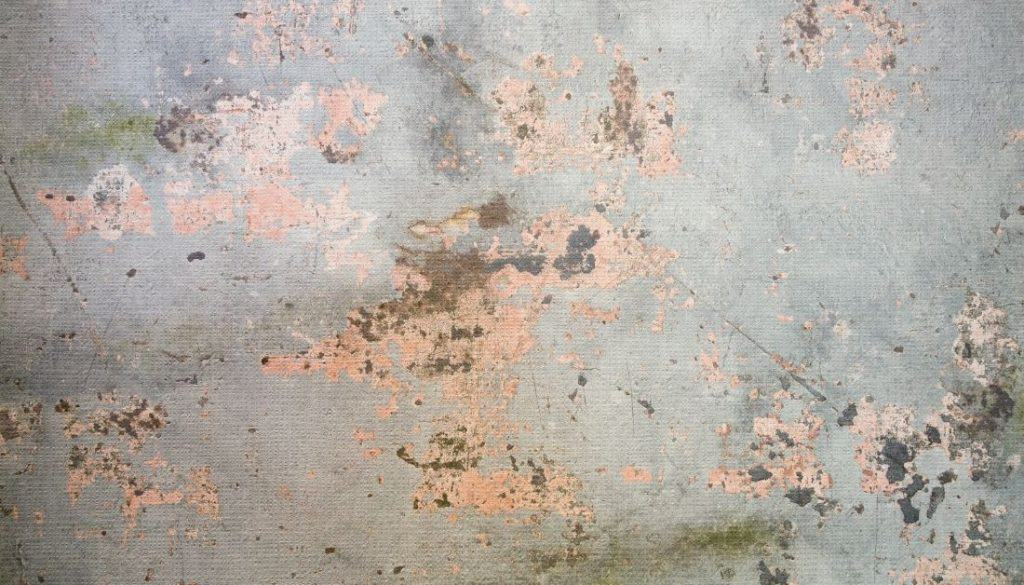 Paint coming off from the wall - signs of termites