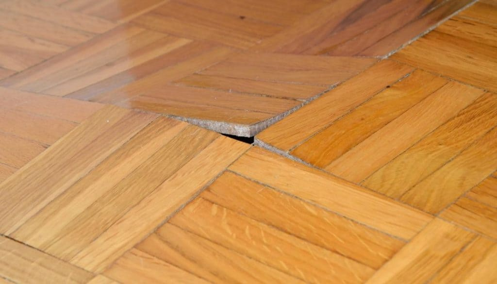 How to get rid of termites in carpets and floor